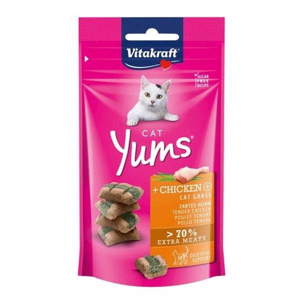 dierendag-kat-snoepjes
