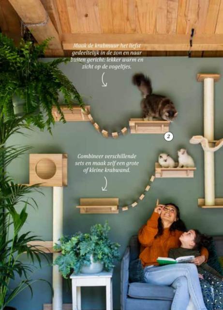 dierendag-kat-klimwand