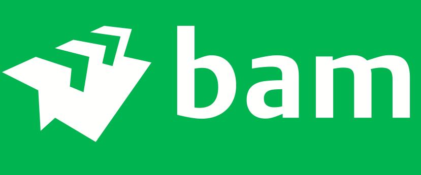 Ondersteuning HR Projecten BAM