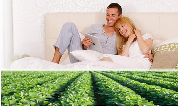 leticia echtpaar met soya