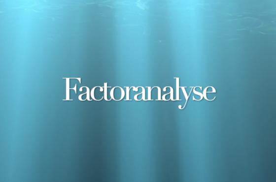 factoranalyse in SPSS