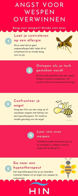 angst voor wespen overwinnen