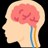 brein en neurotransmitters epigenetica blueprint