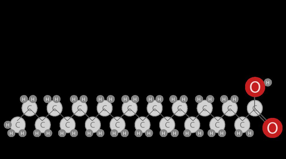 chemische structuur vetzuur