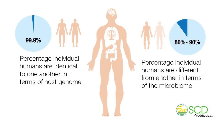 Variatie micro-organismen maakt mensen uniek