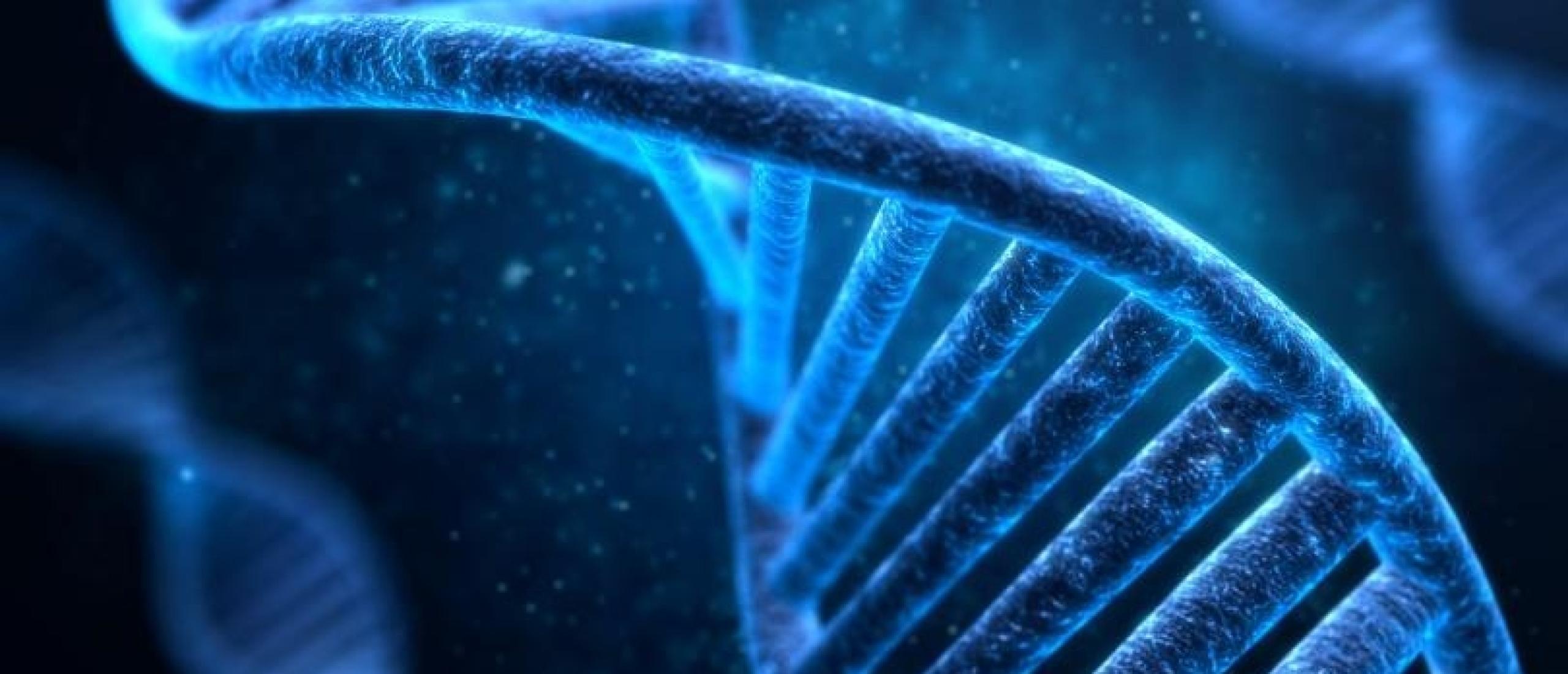 Hoe je door Epigenetica weer controle neemt over je gezondheid