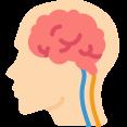 Pijler Brein Transformatie Programma