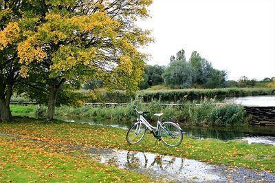 hoe afvallen door fietsen