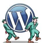 wordpress website verhuizen