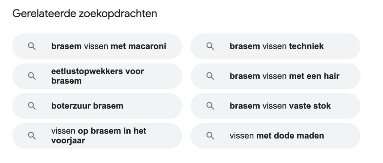 screenshot van gerelateerde zoekopdrachten Google