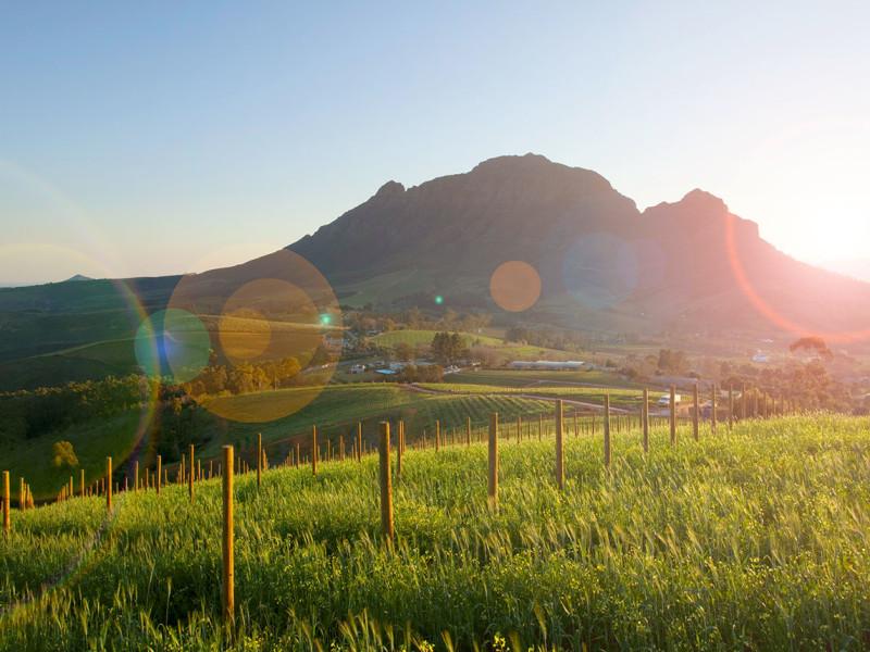 Luxe rondreis door Zuid-Afrika