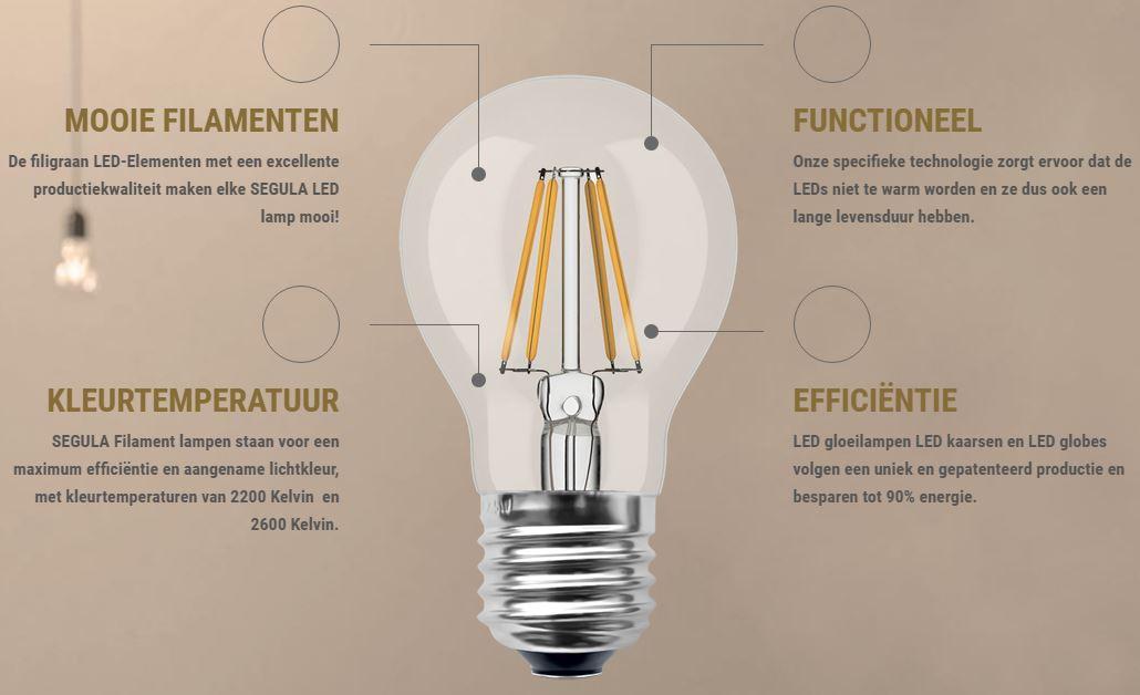 dimbare led lamp led filament globelamp. Black Bedroom Furniture Sets. Home Design Ideas