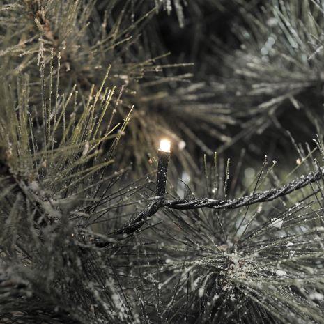 verlichting kerstboomverlichting