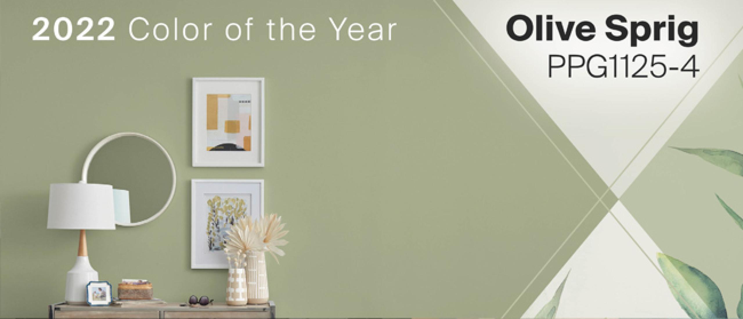PPG's Kleur van het Jaar 2022 : Olive Sprig
