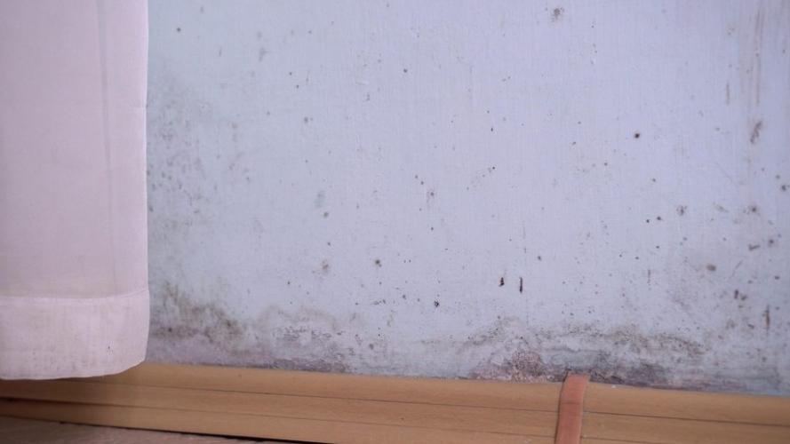 duurzame-isolatiematerialen-vocht-schimmel