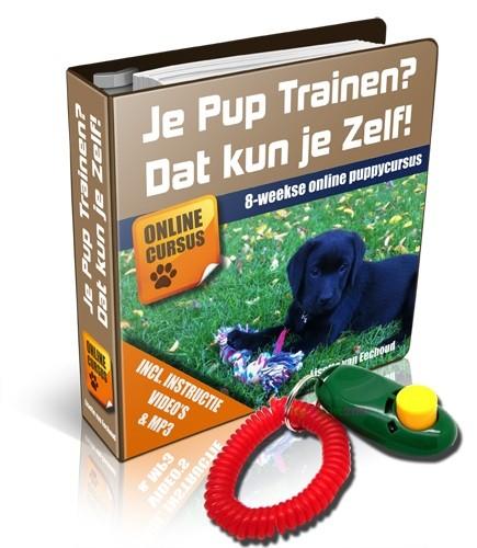 Puppycursus online in corona tijd