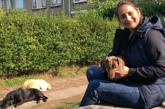 puppycoach Lisette informatie over pups, pubers en volwassen honden