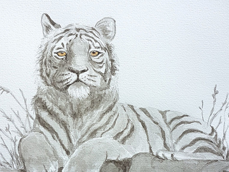 Tiger ink painting commission