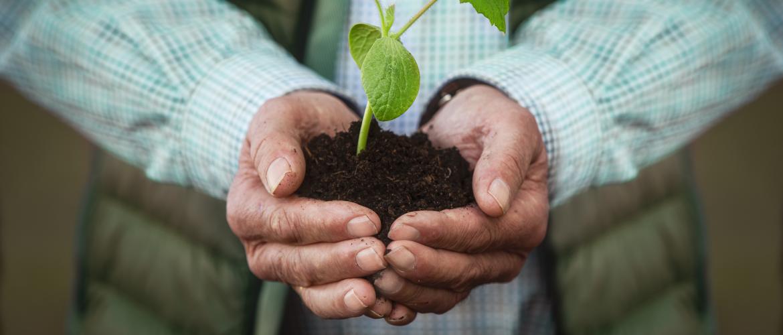 Review plantenvoeding 3A86 van Reico Vital Systeme
