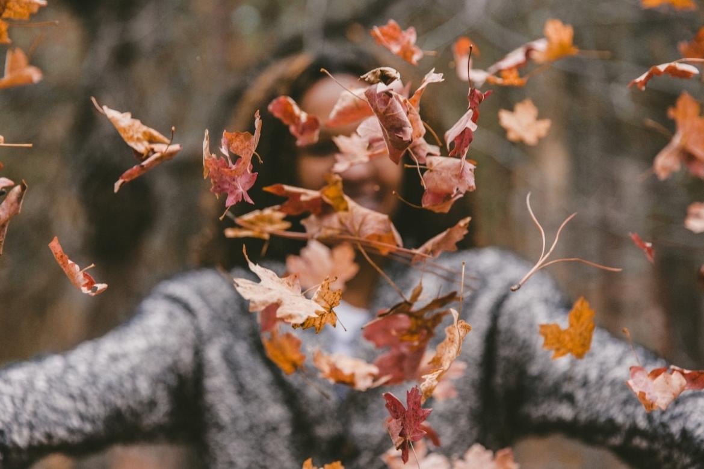 biodiversiteit in de tuin in de herfst en winter