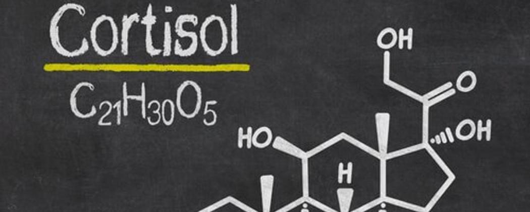 Cortisol | 6 Tips om het Stresshormoon te verlagen!