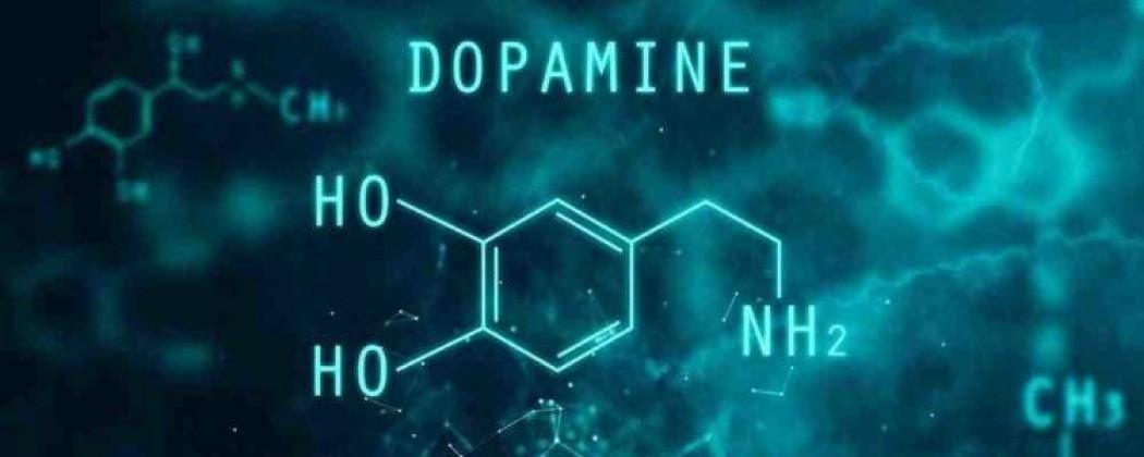 Dopamine Tekort   Symptomen + #4 Tips Dopamine Verhogen!