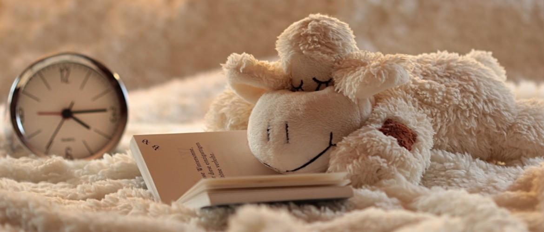 Gemiddeld uren Slaap | Ontdek hoeveel uur jij moet Slapen!
