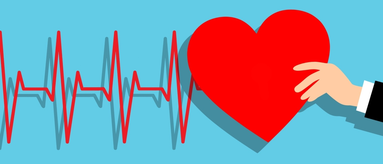 Hartritmevariabiliteit   Wat is HRV en de Normwaarden?