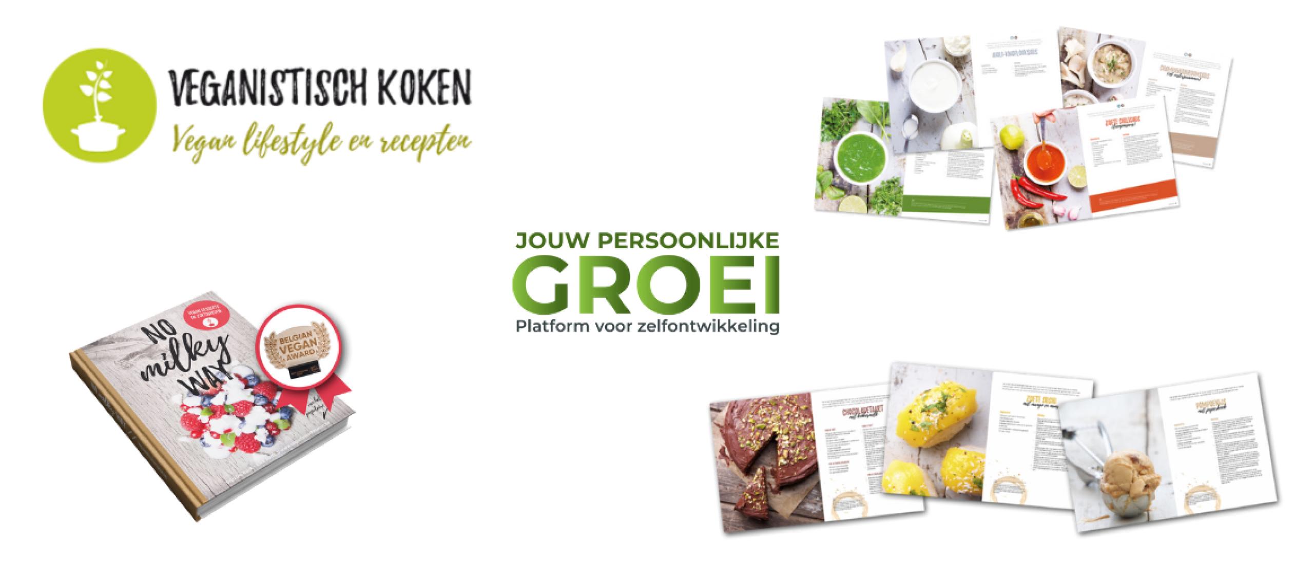 Lekker veganistisch koken voor beginners! (2021) Kookboek Elke Aerts | Extra voordelig!