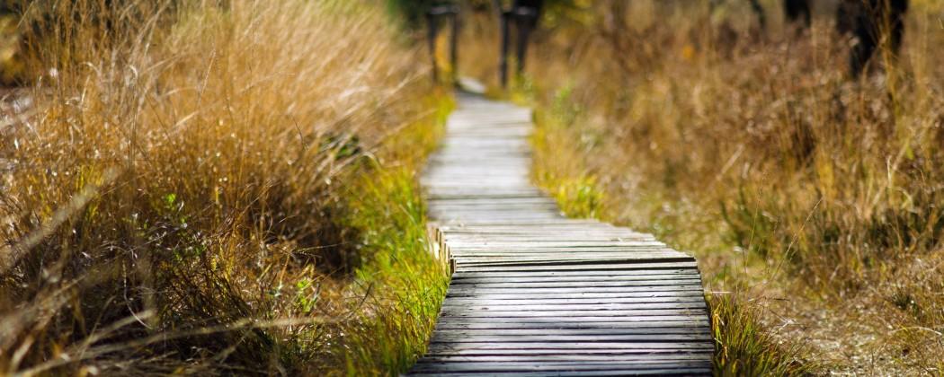 Persoonlijke Ontwikkeling   4 Tips voor Jouw Persoonlijke Groei!