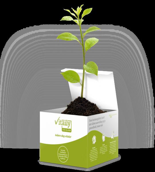 Vitaily Vegan Bonus boom bij elke maanddoos