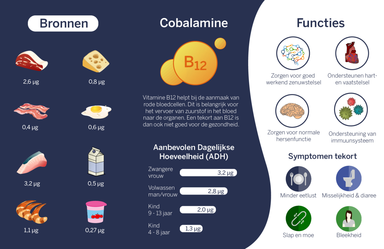 Vitamine B12   Beste Oplossing bij Vitamine B12 tekort!