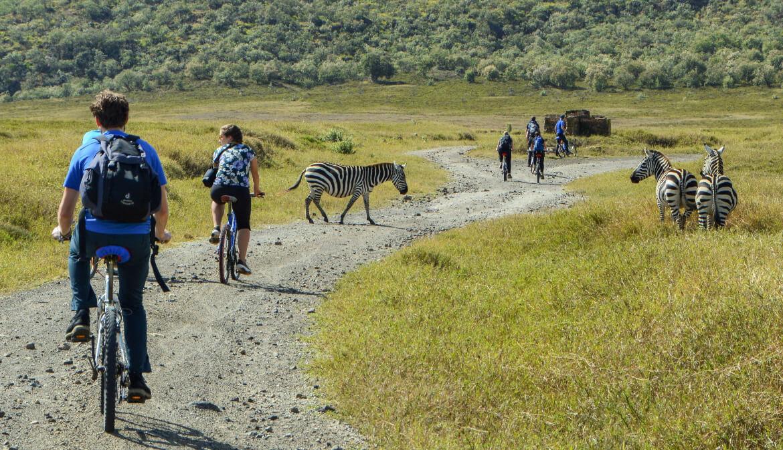 Avontuurlijke activiteiten: mountainbiken