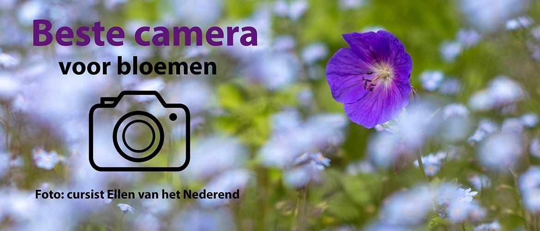 Beste camera om bloemen te fotograferen