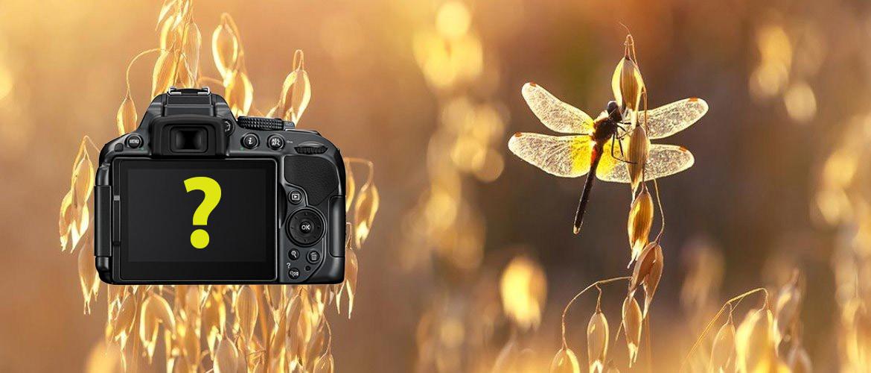 Beste camera voor macrofotografie & closeup
