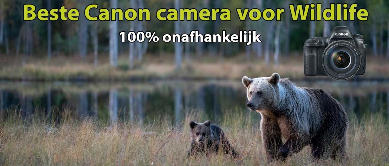 Beste Canon camera voor Wildlife fotografie
