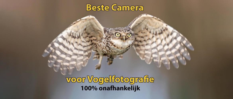 Beste camera om vogels te fotograferen