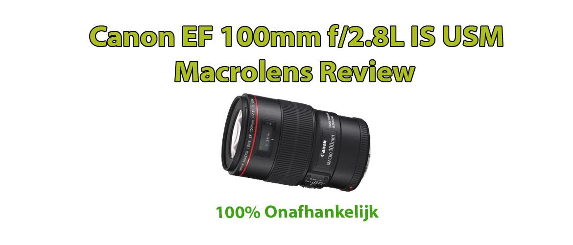 Canon EF 100mm f/2.8L IS USM Macrolens Review