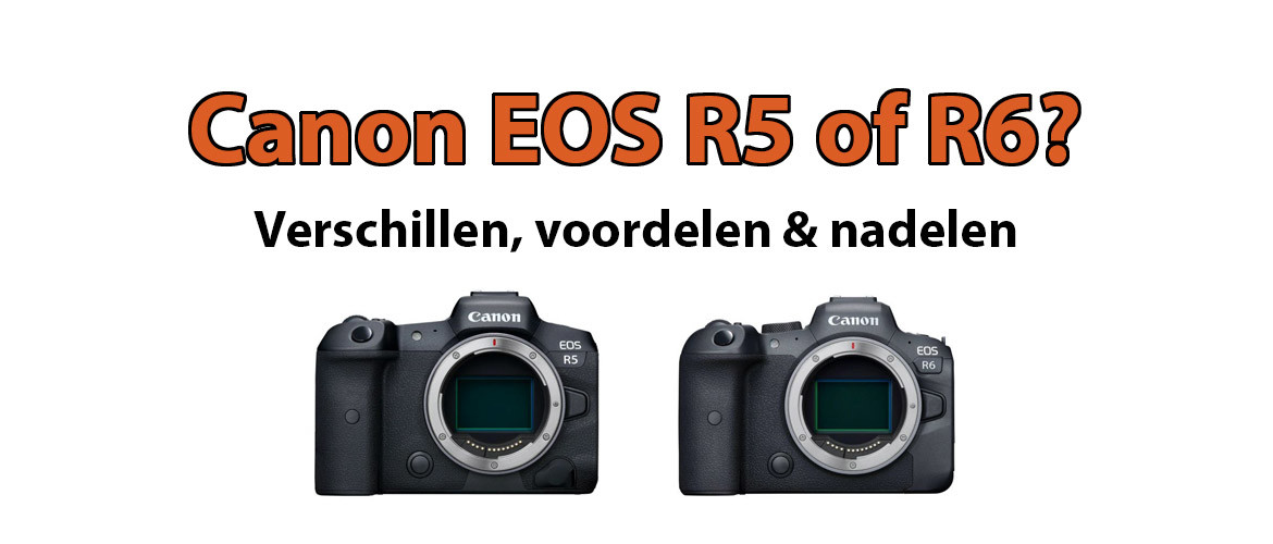 Canon EOS R5 of R6?
