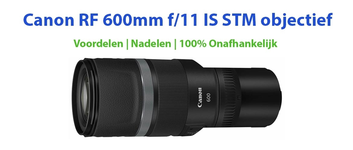 Canon RF 600 mm F/11 IS STM Review