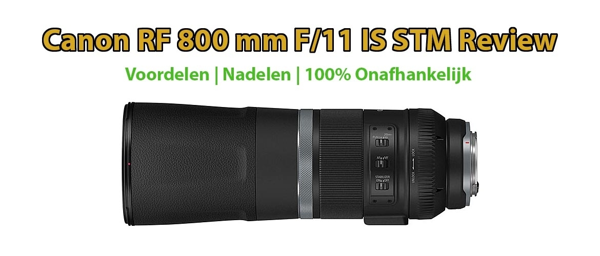Canon RF 800 mm F/11 IS STM Review