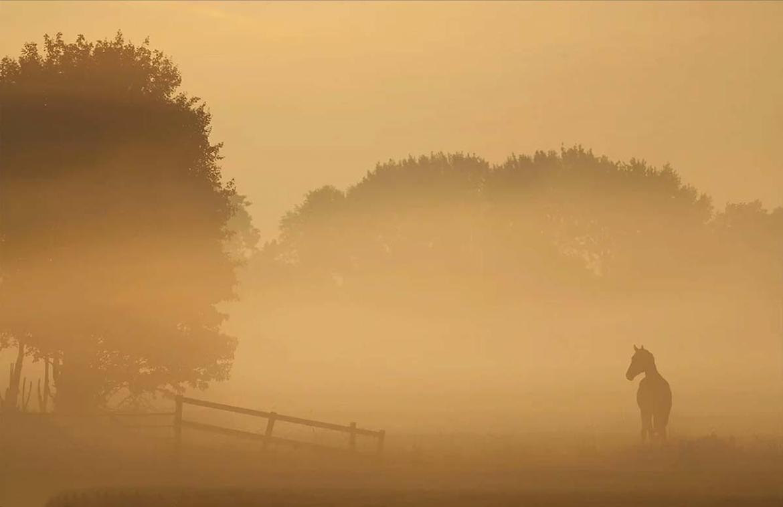 Landschapsfotografie Nikon lens