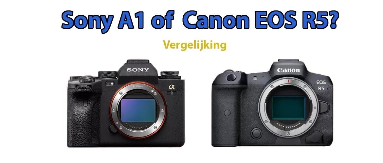 Verschil Sony A1 of Canon EOS R5: Welke is beter?