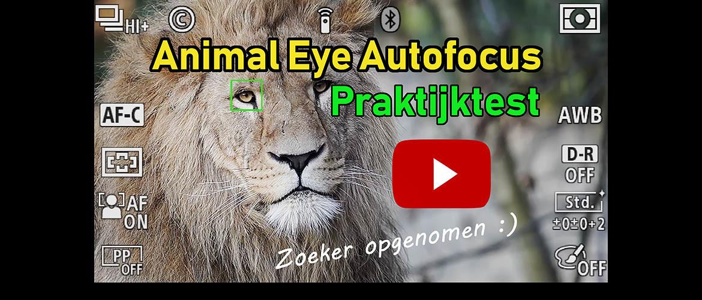Animal Eye Autofocus (AF) van Sony: Praktijktest met Video