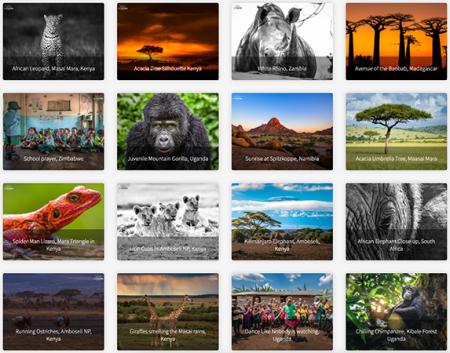 Photography mentor session: Portfolio Review
