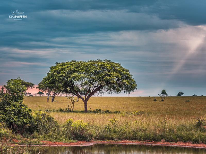 Landscape Photography Murchison Falls Uganda