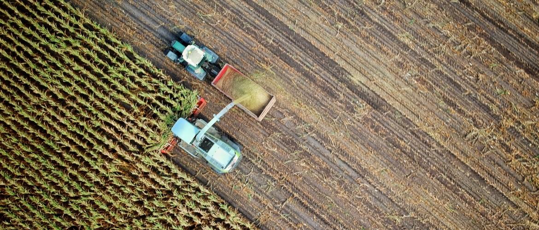 Boeren, Burgers en Biodiversiteit: de weg vooruit met Herenboeren als kraamkamer