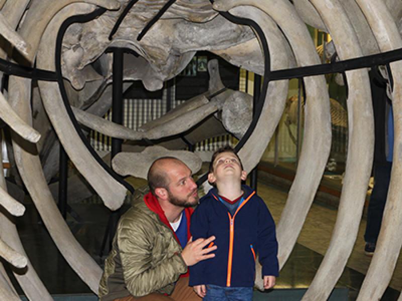 Aquarium-Muséum Luik