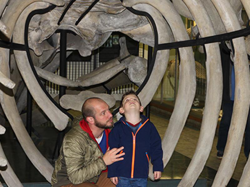 Aquarium Luik met kinderen