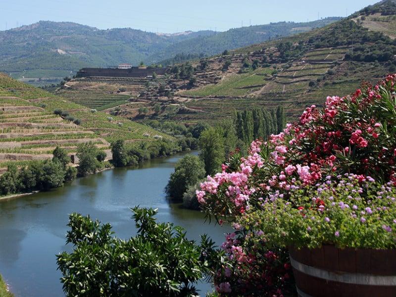 Vakantie in Douro Vallei met kinderen